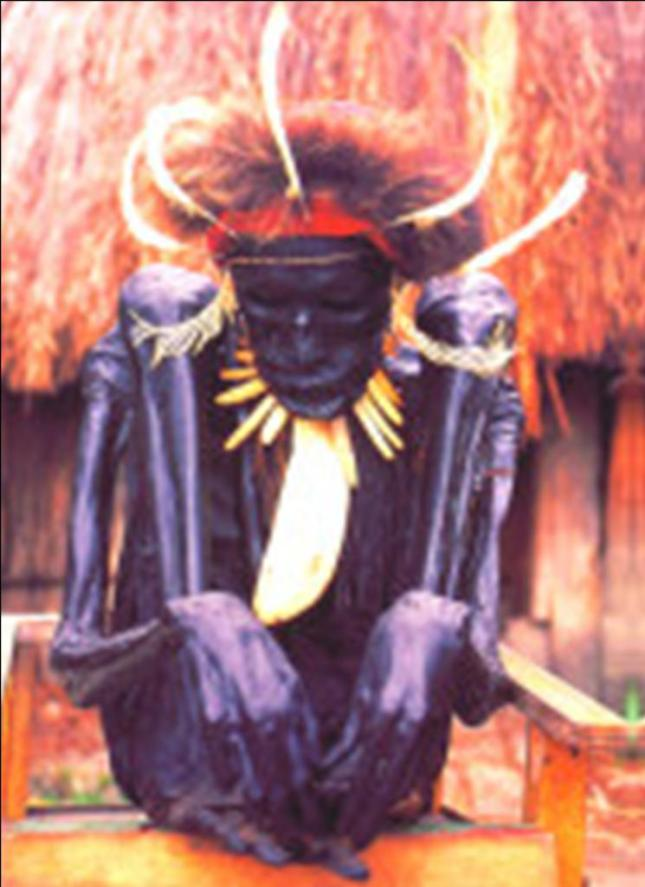 Mumi Ketua Adat Wamena...